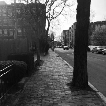 Early_evening_walk.__cambridgema__boston__spring__neighborhood_April_28__2014_at_0908PM