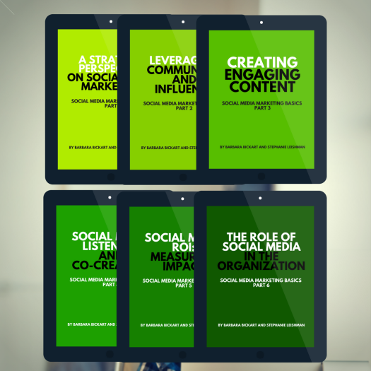 Social Media Marketing Basics series (6-book set)